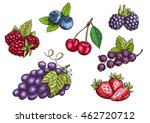 Berries Set. Hand Drawn Color...