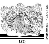 hand drawn lion coloring page. | Shutterstock .eps vector #462787138