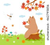 Autumn Time In Forest.bear And...