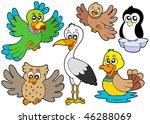 Cute Birds Collection 2  ...