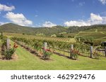 Small photo of Hunter Valley Winery Australia