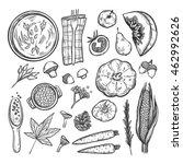 hand drawn vector illustration. ... | Shutterstock .eps vector #462992626