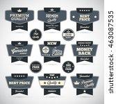 vintage labels set. vector... | Shutterstock .eps vector #463087535