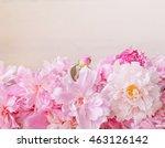 pink peony vintage background... | Shutterstock . vector #463126142