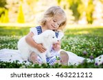 Stock photo happy little girl playing with samoyed puppy in the summer garden on the green grass 463221212