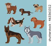 dog breed silhouette for dog... | Shutterstock . vector #463361012