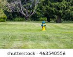 Fire Hydrant In The Meadow. ...