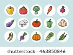 vegetable and fruit icons set... | Shutterstock .eps vector #463850846