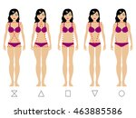 vector illustration of five... | Shutterstock .eps vector #463885586