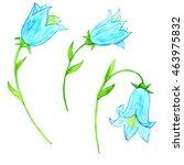watercolor drawing blue... | Shutterstock . vector #463975832