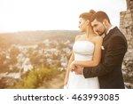 wedding couple posing for the... | Shutterstock . vector #463993085