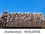 flock of white doves on the... | Shutterstock . vector #464124536