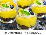 fresh tasting summer dessert  ... | Shutterstock . vector #464383022