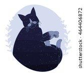space cat   Shutterstock . vector #464406872