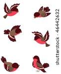 Set Funny Robin Birds  Vector...