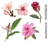 illustration of beautiful... | Shutterstock . vector #464508656