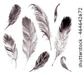 watercolor drawing feather... | Shutterstock . vector #464642672