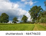 green field  trees and rural... | Shutterstock . vector #46474633