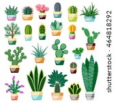 Set of cactus and succulents in pots. Indoor plants in a flat style. Vector illustration.