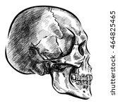 hand drawn anatomy skull with... | Shutterstock .eps vector #464825465
