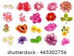 Stock vector flower set 465302756
