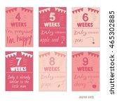 pregnancy 4 9 weeks vector... | Shutterstock .eps vector #465302885