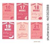 pregnancy 16 21 weeks vector... | Shutterstock .eps vector #465302888