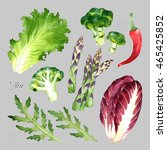 isolated watercolor vegetables... | Shutterstock . vector #465425852
