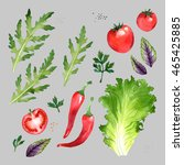 watercolor vegetables set with... | Shutterstock . vector #465425885