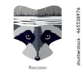 vector cartoon raccoon head....