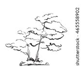hand drawn trees. doodle branch ... | Shutterstock . vector #465558902