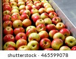ripe apples being processed and ... | Shutterstock . vector #465599078