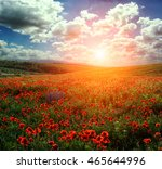 fantastic evening with...   Shutterstock . vector #465644996