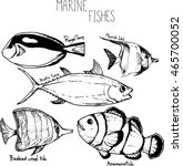 drawing fishes. marine fishes... | Shutterstock .eps vector #465700052