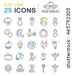 set vector line icons in flat... | Shutterstock .eps vector #465792305