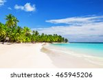 coconut palm trees on white... | Shutterstock . vector #465945206