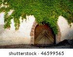 An Image Of A Door Overgrown...