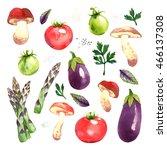 watercolor vegetables set with... | Shutterstock . vector #466137308