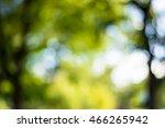 Blur Garden Background