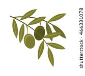 olive seeds plant icon vector... | Shutterstock .eps vector #466331078