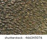 surface knobby design of bark | Shutterstock . vector #466345076