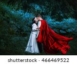 medieval knight with lady | Shutterstock . vector #466469522