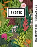 vector card vintage. exotic... | Shutterstock .eps vector #466626236
