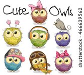 Set Of Cute Cartoon Owls On A...