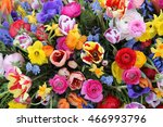 Mixed Spring Flowers In An...