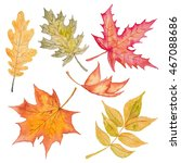 Autumn Leaves Fall Watercolor...