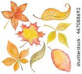 Autumn Fall Orange Watercolor...