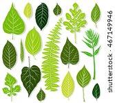 green leaves set on white... | Shutterstock .eps vector #467149946