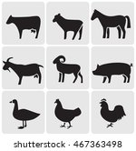 farm animals icons | Shutterstock .eps vector #467363498