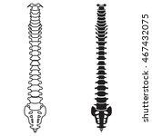 spine vector | Shutterstock .eps vector #467432075